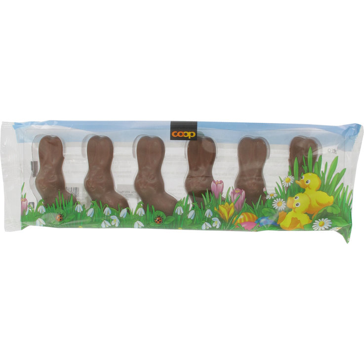 Milk Chocolate Bunnies - Small Milk Chocolate Bunnies 6 Pieces