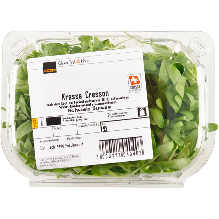 Sprouts & Watercress - Garden Cress 1 Box