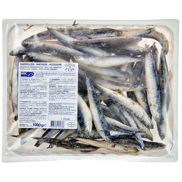 Whole Fish & Fillets - Gold Star MSC Anchovies
